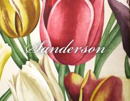 Sanderson イメージ画像